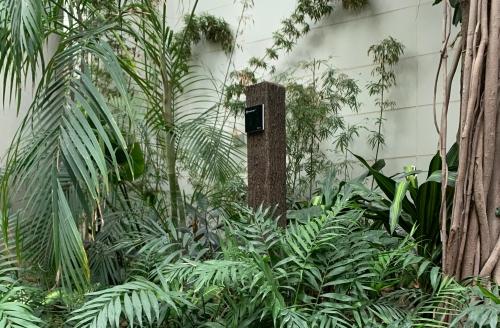 TM-500 w ogrodzie botanicznym